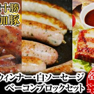 【ふるさと納税】北海道十勝の無添加豚ウインナー・白ソーセージ各10本前後とベーコンブロック600g 【お肉・ソーセージ・肉の加工品・豚肉・ウインナー・燻製・セット・詰め合わせ】