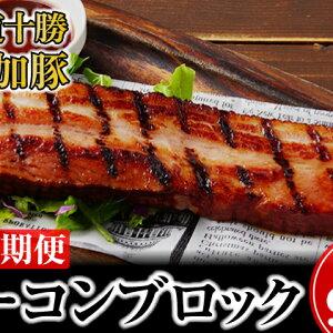 【ふるさと納税】北海道十勝の無添加豚ベーコンブロック900g 3回定期便 【定期便・肉の加工品・お肉・燻製】