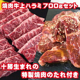 【ふるさと納税】牛上ハラミ(サガリ)700g タレ付き焼肉セット 【お肉・牛肉・焼肉・バーベキュー】 お届け:2〜3ヶ月お時間がかかる場合があります。