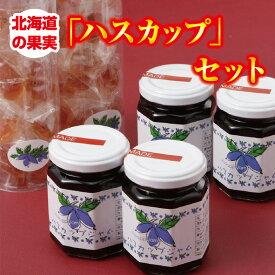 【ふるさと納税】A042-3 北海道の果実「ハスカップ」セット