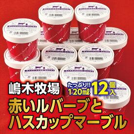 【ふるさと納税】A031-5赤いルバーブとハスカップマーブルアイス<120ml×12個>