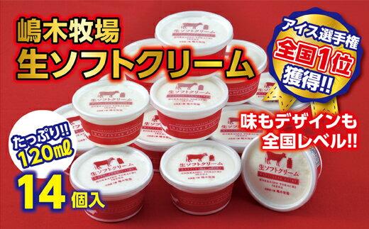 【ふるさと納税】A031-1 牧場の生ソフトクリーム