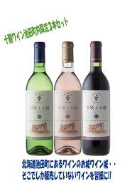 【ふるさと納税】B001-1 十勝ワイン池田町内限定3本セット