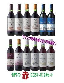 【ふるさと納税】D001-1 十勝ワイン赤にこだわったビンテージ12本セット