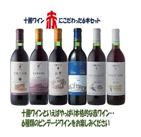 【ふるさと納税】C001-1 十勝ワイン赤にこだわったビンテージ6本セット