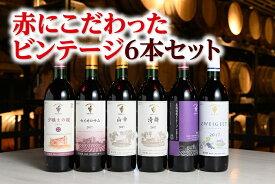 【ふるさと納税】C001-1-1 十勝ワイン赤にこだわったビンテージ6本セット 北海道