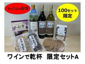 【ふるさと納税】B01-A ワインで乾杯限定セットA