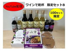 【ふるさと納税】B02-B ワインで乾杯限定セットB
