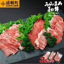 【ふるさと納税】うらほろ和牛 焼肉3種(肩肉(ウデ)400g+バラ400g+モモ200g)セット