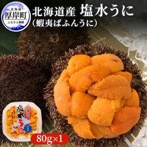【ふるさと納税】北海道産 蝦夷ばふんうに(塩水)100g×1 【魚貝類・雲丹】 お届け:※9月は配送不可期間となります。