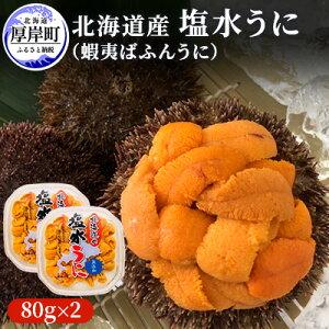 【ふるさと納税】北海道産 蝦夷ばふんうに(塩水)100g×2 【魚貝類・雲丹】 お届け:※9月は配送不可期間となります。