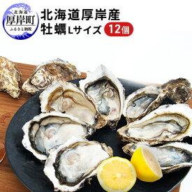【ふるさと納税】厚岸産牡蠣Lサイズ 1ダース(12個入り) 【魚貝類・生牡蠣・かき】