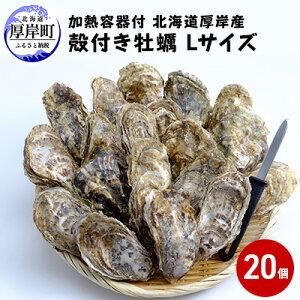 【ふるさと納税】厚岸産殻付き牡蠣Lサイズ20個入(加熱容器付) 【魚貝類・生牡蠣・かき】