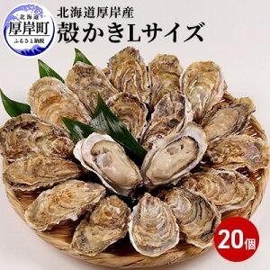【ふるさと納税】厚岸産 殻かきL20個セット 【魚貝類・生牡蠣・かき】