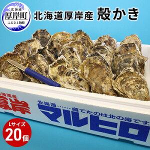 【ふるさと納税】厚岸産殻かきL20個セット 【魚貝類・生牡蠣・かき】