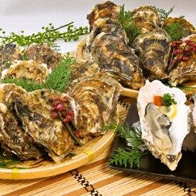 【ふるさと納税】北海道厚岸産殻付き牡蠣20個(マルえもん Lサイズ) 【魚貝類・生牡蠣・かき・カキ・シーフード】