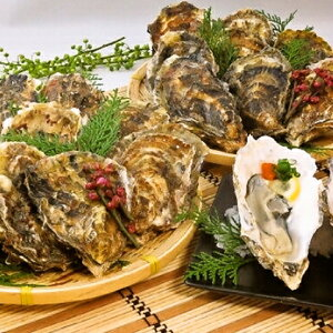【ふるさと納税】北海道厚岸産殻付き牡蠣20個(マルえもん Lサイズ) 【魚貝類・生牡蠣・かき】