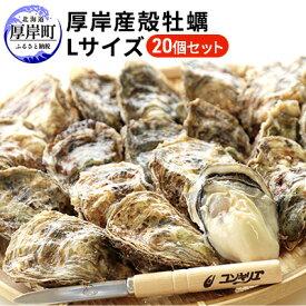 【ふるさと納税】厚岸産殻牡蠣Lサイズ20個セット 【魚介類・牡蠣】