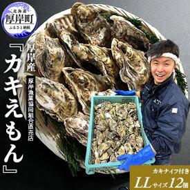 【ふるさと納税】厚岸産 ブランドかき『カキえもん』LLサイズ12個セット 【魚介類・牡蠣】 お届け:2020年11月〜2021年7月末まで