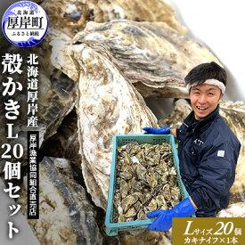 【ふるさと納税】厚岸産 殻かきL20個セット 【魚介類・カキ】