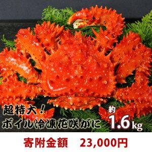 【ふるさと納税】超特大!ボイル冷凍花咲がに1.6kg 【蟹・花咲ガニ】