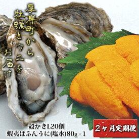 【ふるさと納税】ウニ 厚岸町から牡蠣とウニをお届け【2ヶ月定期便】 【定期便・魚貝類・雲丹・生牡蠣・かき・牡蠣・雲丹・カキ】 お届け:2021年10月〜