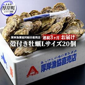 【ふるさと納税】北海道厚岸産 殻付き牡蠣Lサイズ20個 連続3ヶ月お届け 【定期便・魚貝類・生牡蠣・かき・Lサイズ】