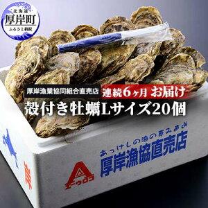 【ふるさと納税】北海道厚岸産 殻付き牡蠣Lサイズ20個 連続6ヶ月お届け 【定期便・魚貝類・生牡蠣・かき・Lサイズ】