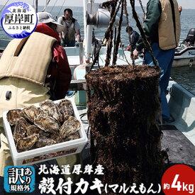 【ふるさと納税】≪訳あり規格外≫北海道厚岸産 殻付カキ(マルえもん)約4kg 【魚貝類・生牡蠣・かき・送料無料・新鮮・濃厚・ワケあり】 お届け:2021年2月〜