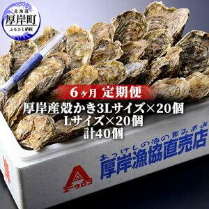 【ふるさと納税】北海道厚岸産 殻かき3L20個・L20個セット 6ヶ月定期便 【定期便・魚貝類・生牡蠣・かき】