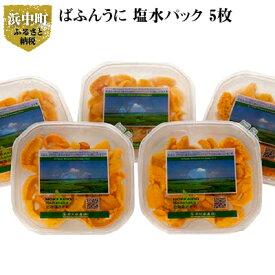 【ふるさと納税】北方四島産 ばふんうに 塩水パック 5枚