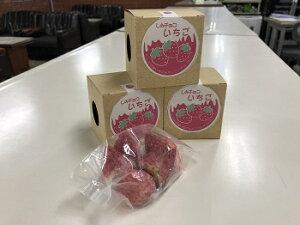 【ふるさと納税】しみチョコいちご5個平成31年4月より初出荷