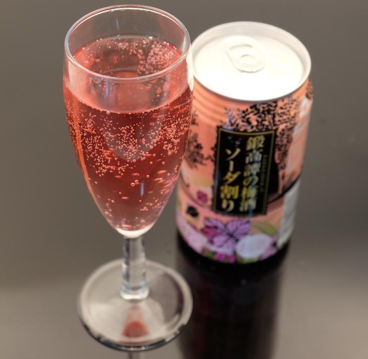 【ふるさと納税】鍛高譚(たんたかたん)の梅酒ソーダ割り[350ml]【24缶入】