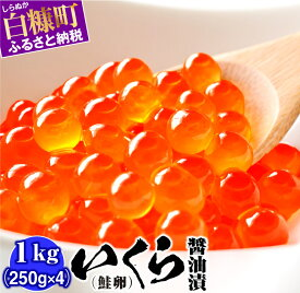 【ふるさと納税】いくら醤油漬(鮭卵)【1kg(250g×2×2)】