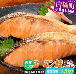 【ふるさと納税】天然アラスカ ユーコン鮭(チャムサーモン)定塩切身【1.5kg】