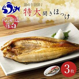【ふるさと納税】知床羅臼産特大開きほっけ(3枚) 北海道 魚介 海産物 魚介類 F21M-196