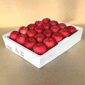 【ふるさと納税】青森県産「ふじ」CA貯蔵りんご(冷蔵)5kg_A18【1073706】