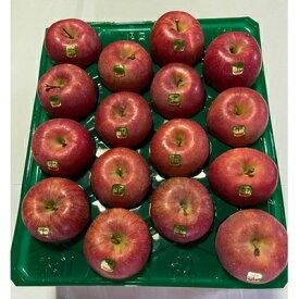 【ふるさと納税】【令和3年10月頃発送開始】りんご「葉取らず昂林」約5kg(家庭用)_A1-825【1118133】