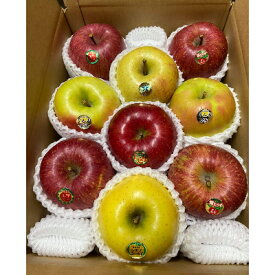 【ふるさと納税】【令和3年11月下旬発送開始】特選りんご バラエティ詰め合わせ 約3kg_A1-822【1118134】