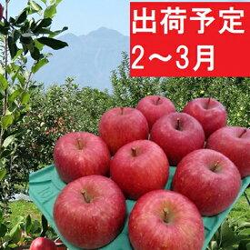 【ふるさと納税】2〜3月 贈答用 EMサンふじ約3kg 糖度13度以上【弘前市産・青森りんご】 【果物類・林檎・りんご・リンゴ】 お届け:2021年2月1日〜2021年3月31日