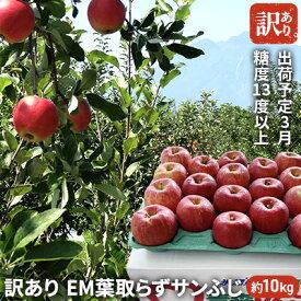 【ふるさと納税】3月 訳あり EM葉取らずサンふじ約10kg 糖度13度以上【弘前市産・青森りんご】 【果物類・林檎・りんご・リンゴ・サンふじ・約10kg・訳あり】 お届け:2021年3月1日〜2021年3月20日