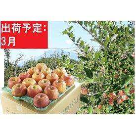 【ふるさと納税】3月 美味!訳あり葉とらずサンふじ約10kg 【弘前市産・青森りんご】 【果物類・林檎・りんご・リンゴ】 お届け:2021年3月1日〜2021年3月31日