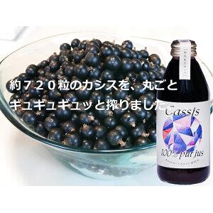 【ふるさと納税】カシス果汁100%ジュース(無加糖・無添加) 250ml×2本 【果汁飲料・ジュース】