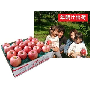 【ふるさと納税】【年明け】須藤農園のサンふじ家庭用約5kg 【果物類・林檎・りんご・リンゴ】 お届け:2020年1月7日〜2020年1月31日