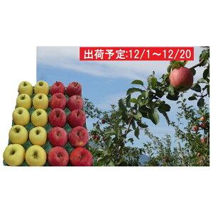 【ふるさと納税】12月 贈答用 津軽のおまかせりんご約5kg 2種以上※サンふじ確約(サンふじ、王林、ジョナゴールド、金星等) 【果物・フルーツ・詰合せ・セット・林檎・リンゴ】 お届