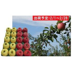 【ふるさと納税】2月 贈答用 津軽のおまかせりんご約5kg 2種以上※サンふじ確約(サンふじ、王林、ジョナゴールド等) 【果物・フルーツ・詰合せ・セット・林檎・リンゴ】 お届け:2020年2月1日〜2020年2月29日