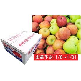 【ふるさと納税】1月 家庭用 津軽のおまかせりんご約10kg1種(王林、ジョナゴールド等) 【果物・フルーツ・くだもの・林檎・リンゴ】 お届け:2020年1月8日〜2020年1月31日