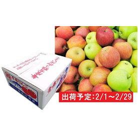 【ふるさと納税】2月 家庭用 津軽のおまかせりんご約10kg1種(王林、ジョナゴールド等) 【果物・フルーツ・くだもの・林檎・リンゴ】 お届け:2020年2月1日〜2020年2月29日
