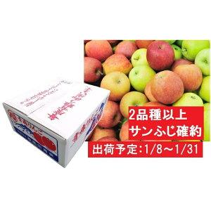 【ふるさと納税】1月 2種以上 家庭用津軽のおまかせりんご約10kg(サンふじ確約) 【果物・フルーツ・林檎・リンゴ・詰合せ】 お届け:2020年1月8日〜2020年1月31日