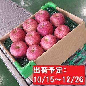 【ふるさと納税】【年内】津軽産りんご6kg(3kg×2箱)ごいっしょに!!品種お任せ 【果物類・フルーツ・林檎・りんご・リンゴ】 お届け:2019年10月15日〜2019年12月26日